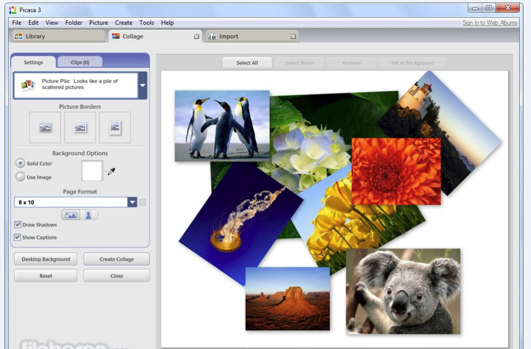 How to Use Picasa in China? - YooCare How-to Guides - YooCare Blog